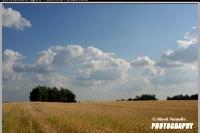 06_opole_rownina_parczewska