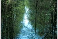 13_jezioro_lucemierz