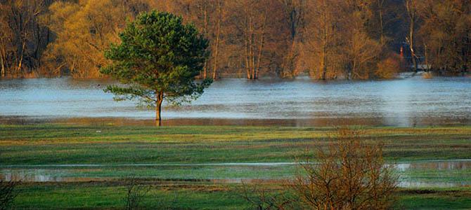 Światowy Dzień Wody – 22.marca