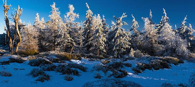 Pogoń za zimą – G.Izerskie  23-26.01.2020
